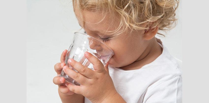 best-water-filter-lrg