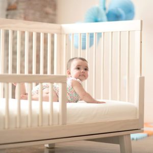 Naturepedic Organic Crib Sheets