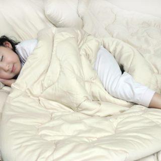 SB_Merino_Wool_Comforter__86780