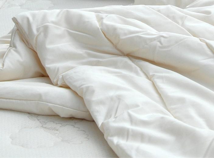 Suite Comfort All Season Wool Comforter Healthy Child