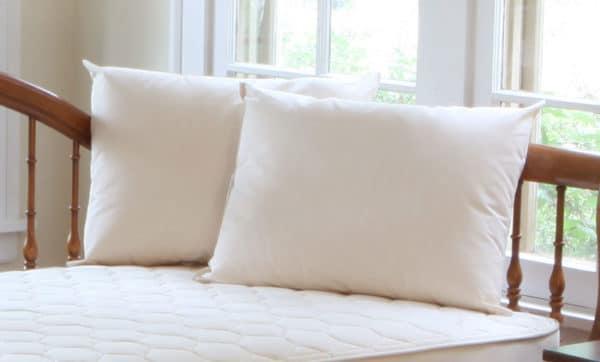 Naturepedic Organic Cotton/PLA Pillow
