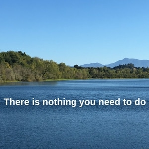 there-is-nothing-you-need-to-do