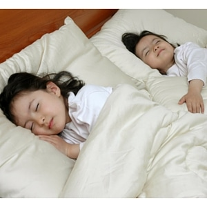 Kids Beds Chemical Exposure Organic Mattress