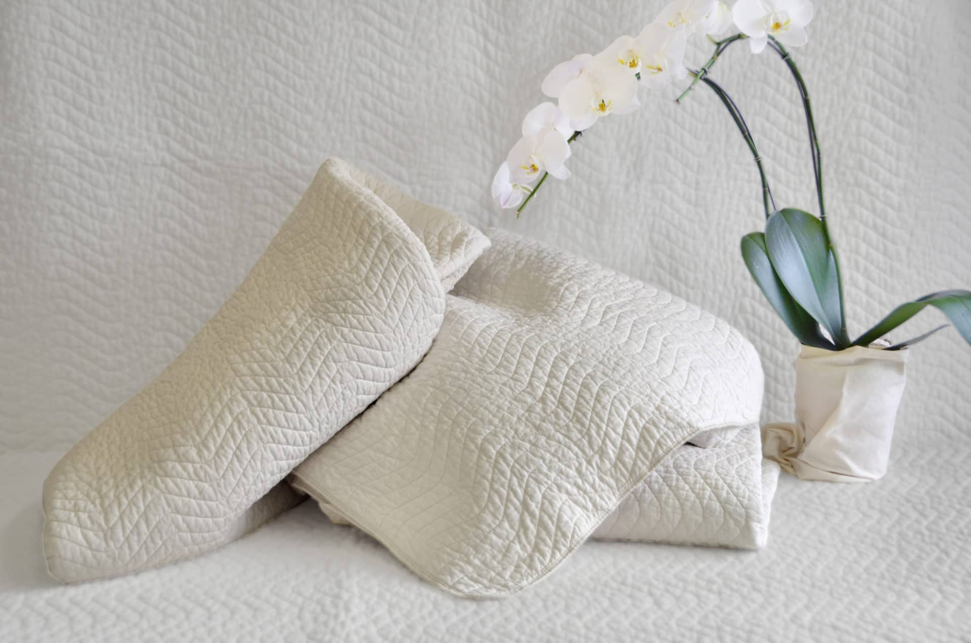 Organic Cotton Mattress Protector Healthy Child